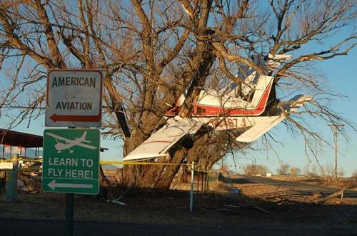 Tree Plane Crash
